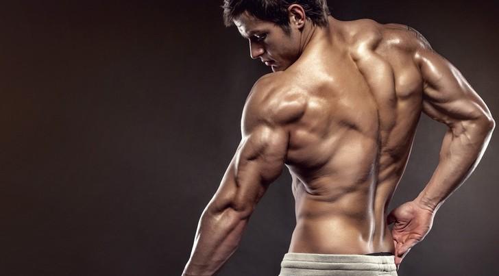 چگونه عضلات جلو بازو و پشت بازو حجیم و زیبا داشته باشیم