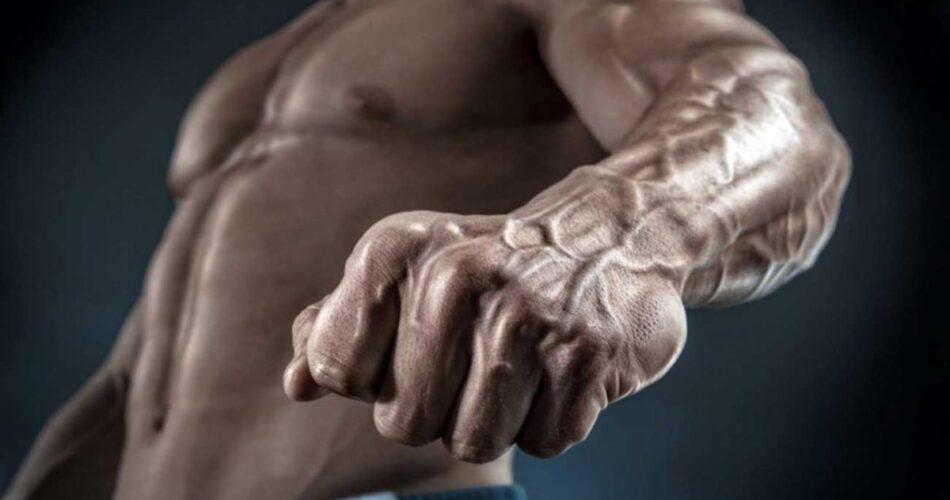 عضلات مچ و ساعد زیبا و حجیم